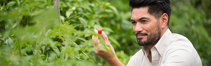 A man looks at a tomato