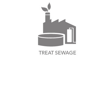 Find out how we treat the sewage before it goes back into the river system